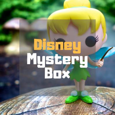 disney mystery box